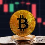 <b>Los miner de Bitcoin no pararán la próxima cacería de toros: Analista on-chain</b>