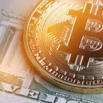 <b>La cantidad de ballenas Bitcoin alcanzaron un record histórico en la última rueda de toros</b>